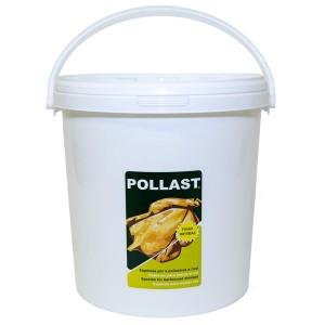 4-POLLAST-FH-cubo