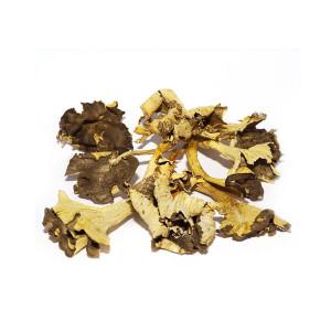 Camagroc-trompeta-amarilla-deshidratada