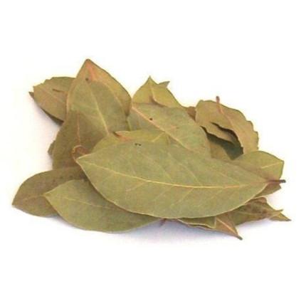 Laurel-en-hojas